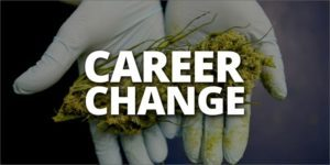 Marijuana Job Search Resume